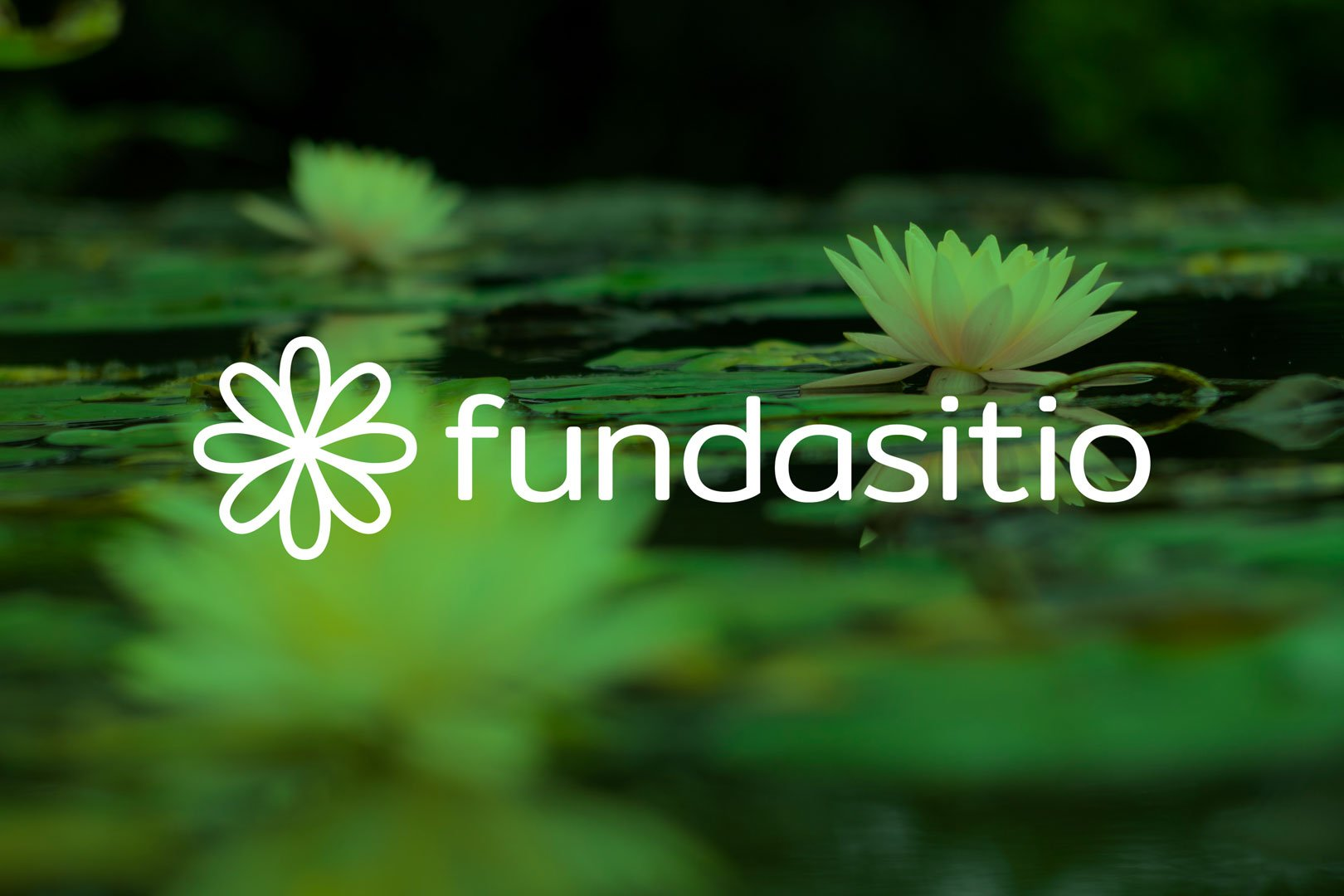 Fundasitio y su flor de loto significan sonrisas y esperanzas